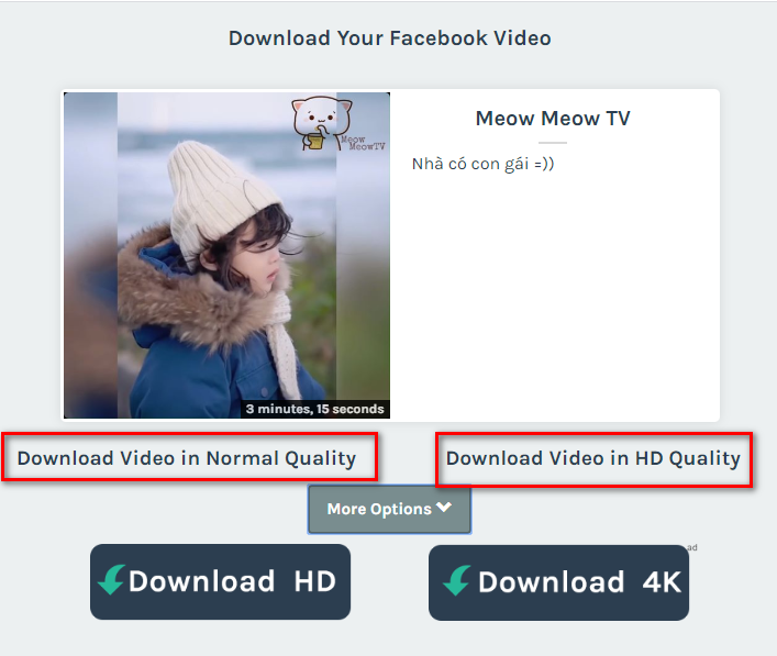 Giao diện tải video Facebook